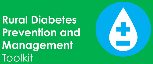 application of meleis transition theory in diabetes